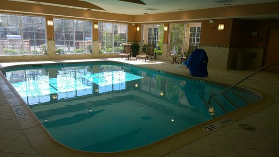 Homewood Suites by Hilton Irving - DFW Airport : Pool