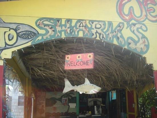 Shark's: entrance
