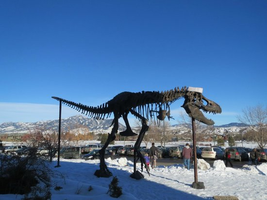 Museum of the Rockies : Dinosaur at the front entrance