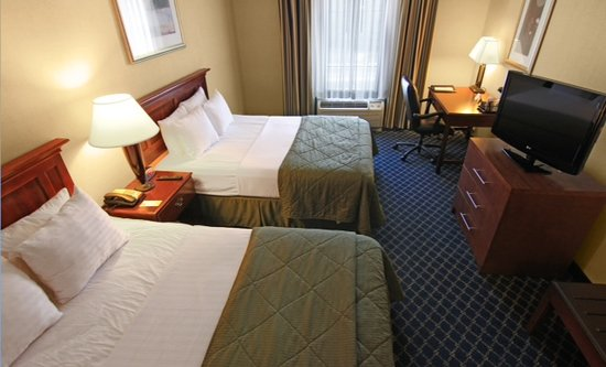 Comfort Inn Randolph: Two Queen Beds
