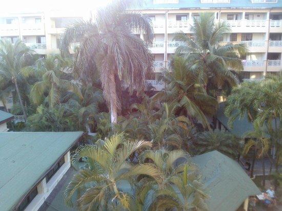 Coral Costa Caribe Resort & Spa : внутренний двор из номера