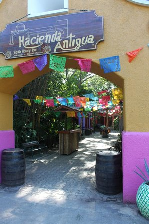 Chankanaab Beach Adventure Park: Tequila Tour