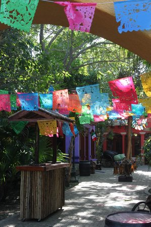 Chankanaab Beach Adventure Park: The Tequila Tour (didn't participate in this)