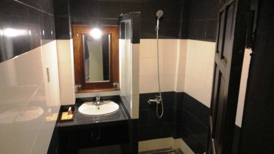 Huy Hoang Garden Hotel: The sink and shower