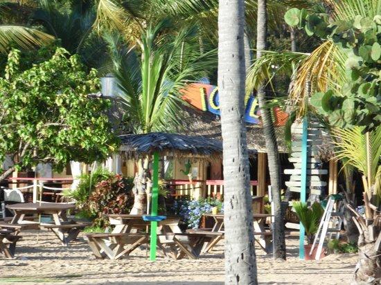 Bolongo Bay Beach Resort: Iggies