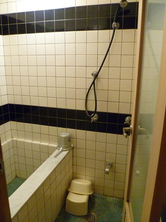 Hotel Edoya : Bathroom that urgently needs refurbishment