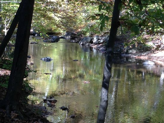 Ridley Creek State Park: Ridley Creek in the fall