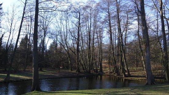 Łazienki-Park (Park der Bäder): gorgeous park