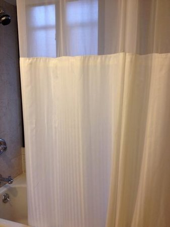 Hilton New York Grand Central : they changed the shower curtains and hadn't noticed it needed changing