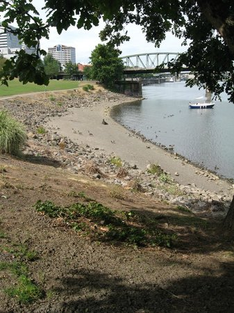 Tom McCall Waterfront Park: portland waterfront park