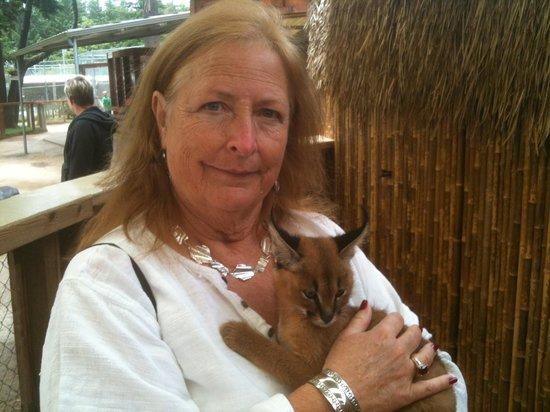 West Coast Game Park Safari: A BABY CERVAL
