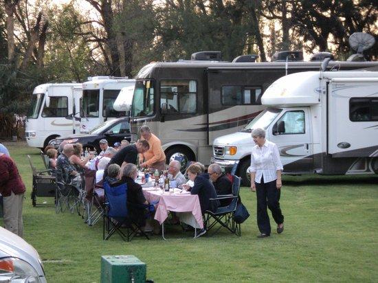 Teotihuacan RV and Trailer Park : Hice muchos amigos!!
