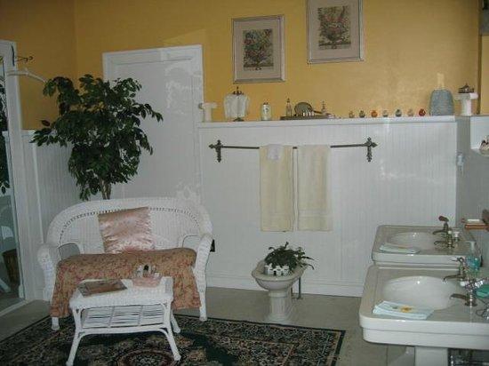 The Doctor's Inn : Bathroom