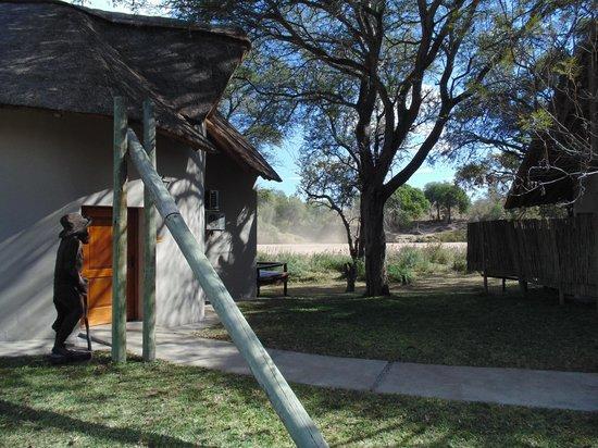 Simbavati River Lodge : Área do hotel