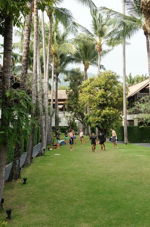 Le Meridien Koh Samui Resort & Spa : The garden area with sports activities in the morning or afternoon.