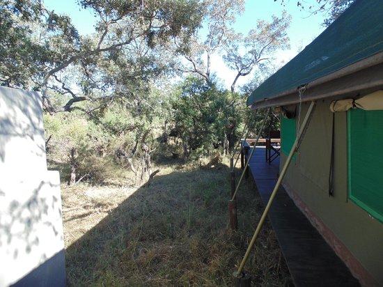 Simbavati River Lodge : lateral da cabana