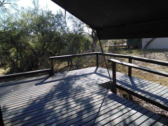 Simbavati River Lodge: Vista linda!!
