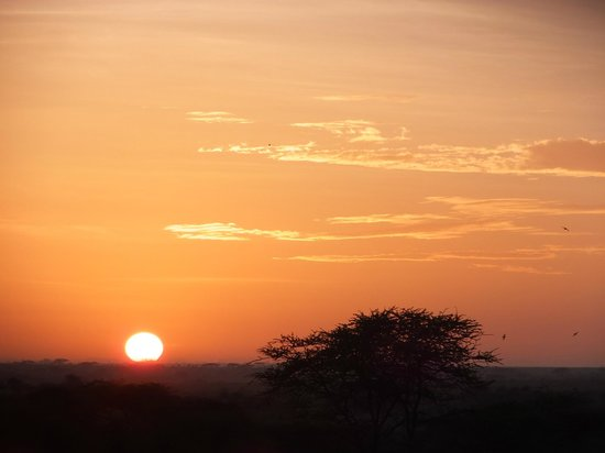 Seronera Wildlife Lodge: 展望台からの朝日その1