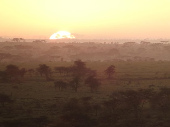 Seronera Wildlife Lodge : 展望台からの朝日その2