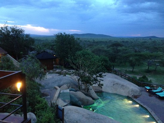Seronera Wildlife Lodge: こんなプール、入ってみたくありませんか?