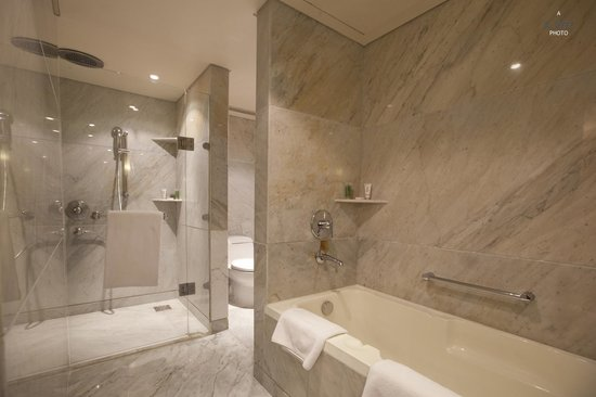 Hyatt Regency Delhi: Bathroom in Regency Suite