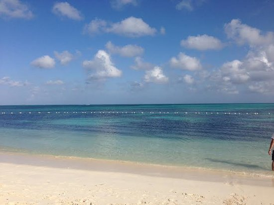Breezes Resort & Spa Bahamas : Beautiful calm waters