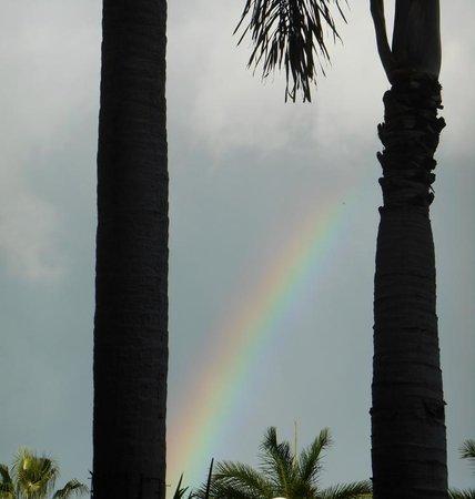 Grand Cayman Marriott Beach Resort: After the rain