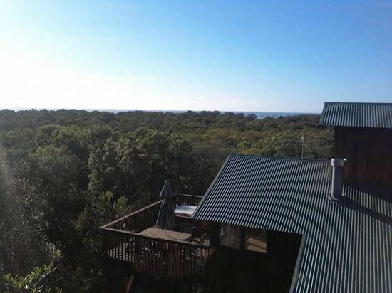 The Oasis Resort & Treetop Houses: stunning views over the bush to the ocean from the expansive deck