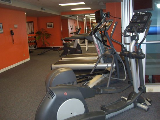 Hotel Indigo Ottawa Downtown: gym