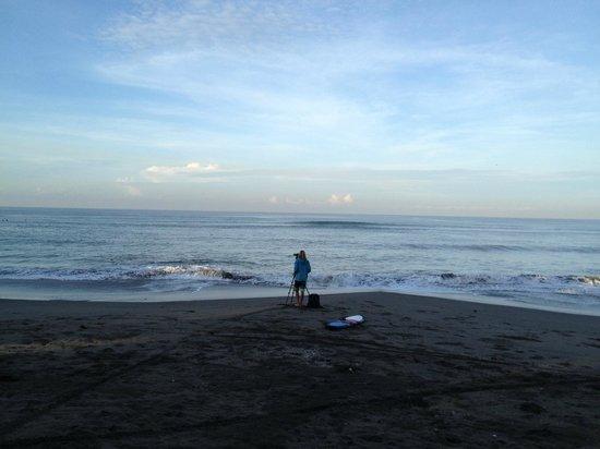 Kubu Kedungu : Kedungu beach- just north of Tanah Lot