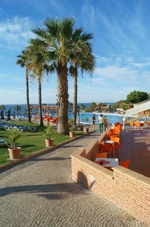 Auramar Beach Resort : Pool area (3 pools all together) 2