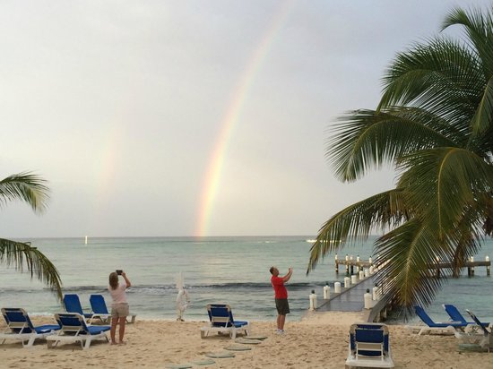 Wyndham Reef Resort: Rainbow