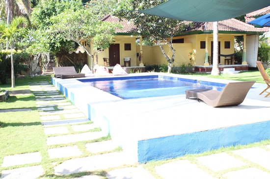 Swimming pool picture of secret garden bungalows nusa for Garden pool bungalow