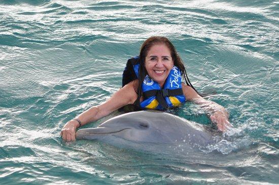 Dolphin Discovery Isla Mujeres: Experiência incrível, amei!