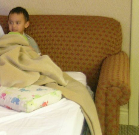 Hilton Vancouver Airport: sofa bed for kiddos
