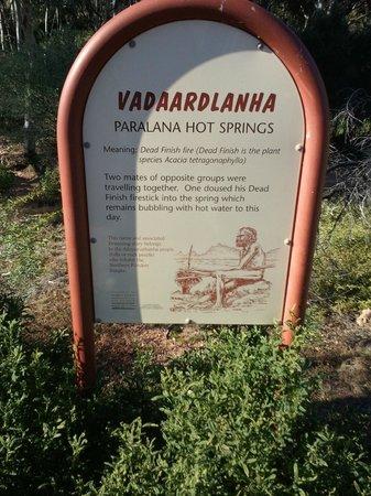 Paralana Radioactive Hot Springs: Paralana hot springs [9]