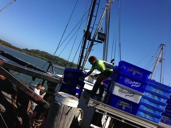 South Coast Retreat: Fresh catch bound for markets