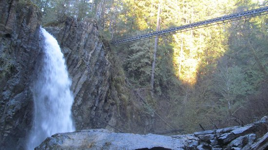 Drift Creek Falls Trail: Falls and bridge
