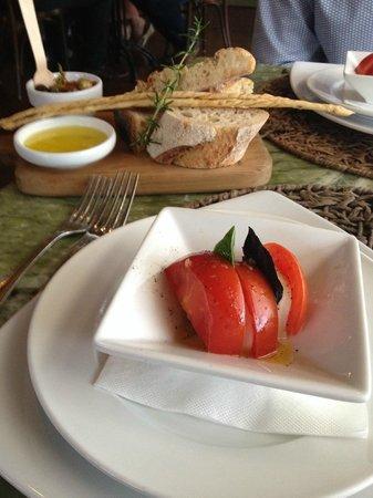 Poderi Crisci : Breads & olives and wonderful fresh tomato and mozzerella