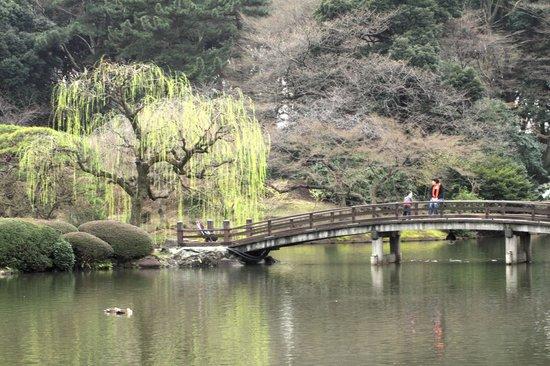 Shinjuku Gyoen National Garden: 桜のピンクと新緑が美しい日本庭園