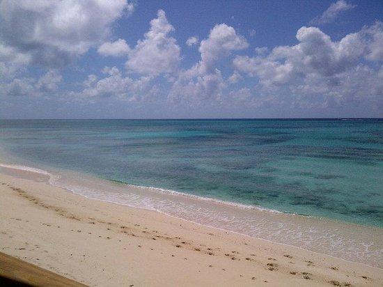 Caribbean Paradise Inn: Beach F