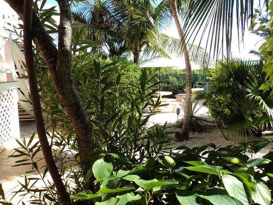Caribbean Paradise Inn: Exterior