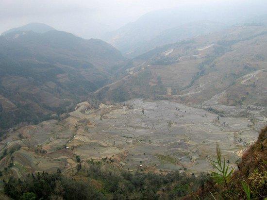 Yuanyang Pengtian: terraced rice fields