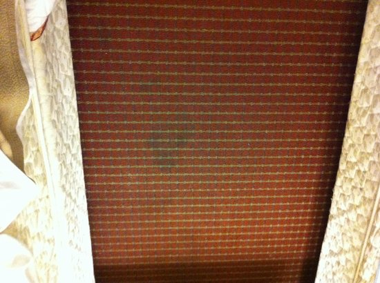 Travelodge Fredericksburg : Tâche sur le tapis