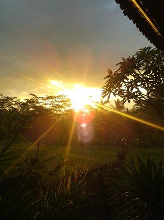 Dukuh Village Homestay: sunset