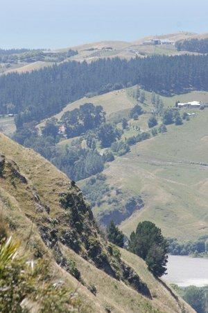 Te Mata Peak: great views