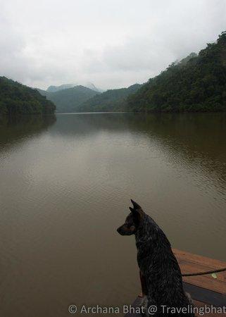 Martz Farm Treehouses and Cabanas Ltd.: Vaca boat trip
