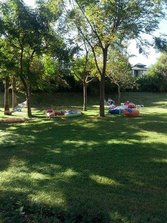 Alva Donna Beach Resort Comfort: Зона территории отеля с гамаками и подушками для отдыха на лоне природы (недалеко от пляжа отеля