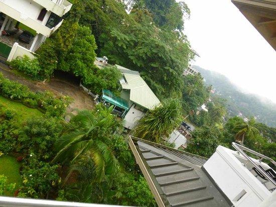 Oak Ray Serene Garden Hotel : view from balconey