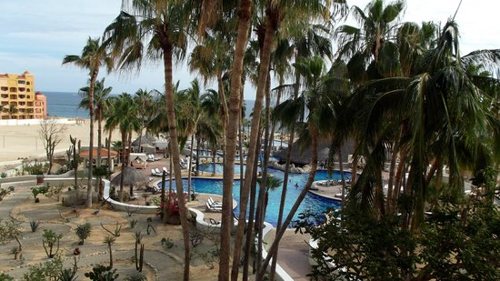 Sandos Finisterra Los Cabos: PALMAS SECAS